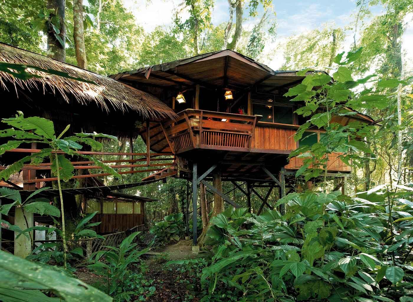 6 hotéis com hospedagens em árvores