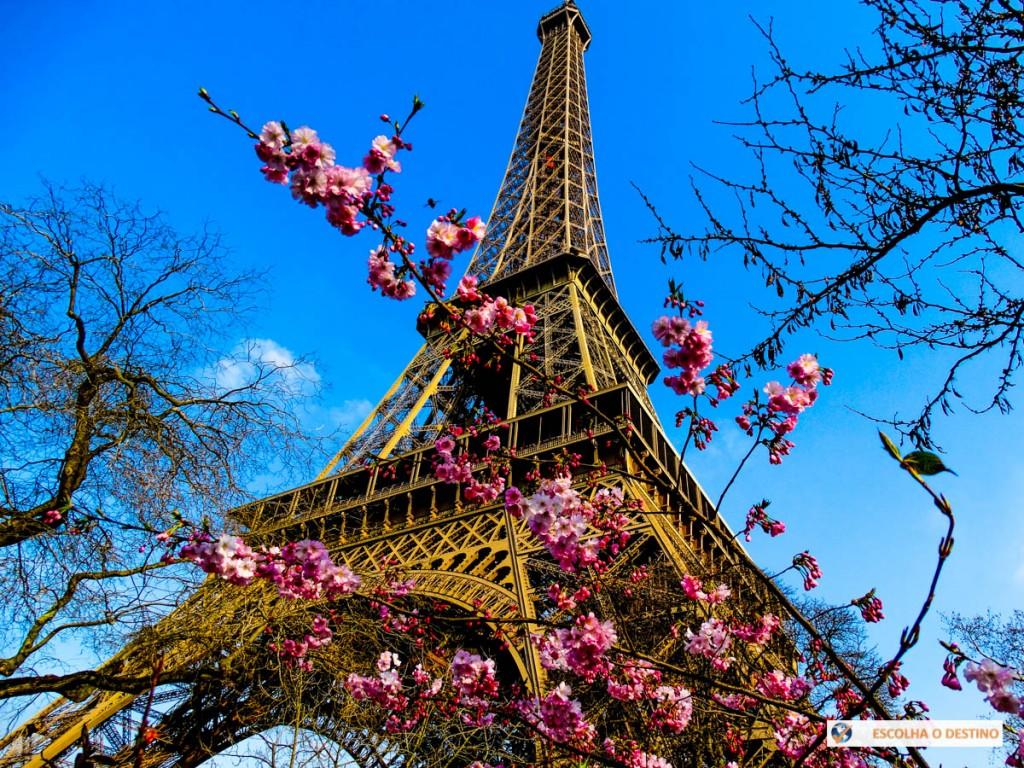 Universidade de Nantes oferece curso de francês online e gratuito